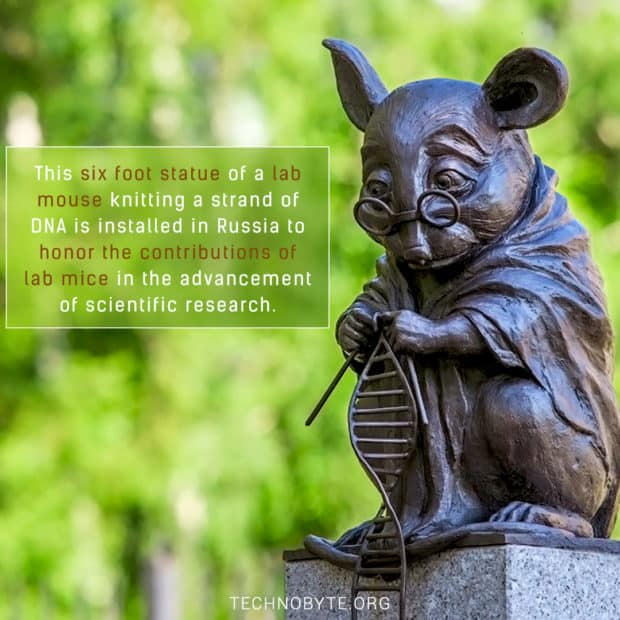unknown fact Lab mouse statue