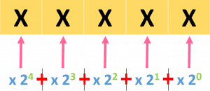 Binary Number System Representation Method