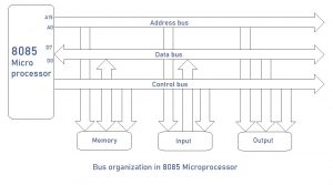 Bus organization in 8085 Microprocessor
